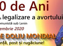 100AniAvort_FB