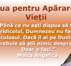 Ziua_MaicaAngelica